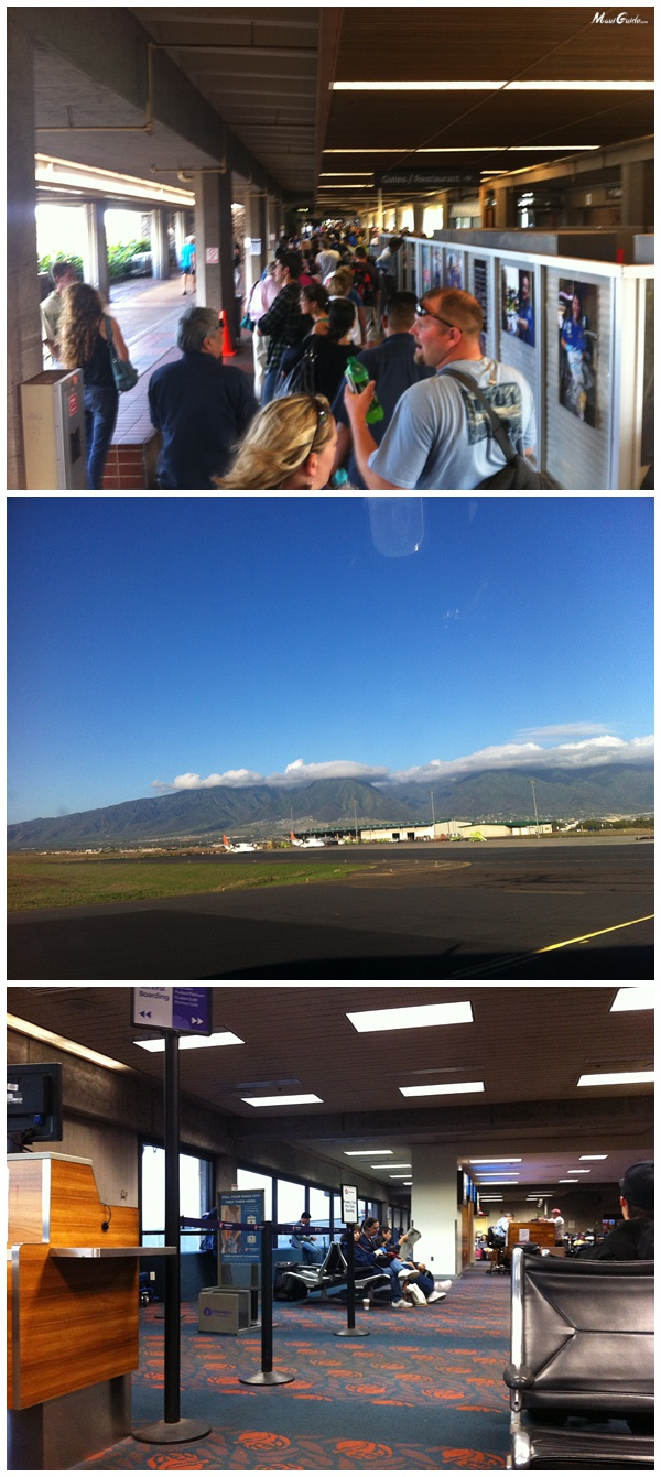 arriving in maui